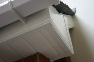 Roofline Quote